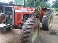 Trator Massey Ferguson 292 4x4 ano 2