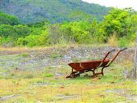 Sitio no Cantá 45km de Boa Vista