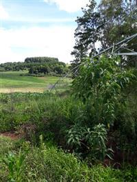 Pivô para 12 hectares