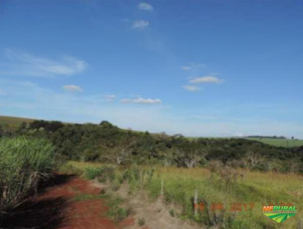 Fazenda Santa Luzia | 23.2050 hectares | Iaras/SP