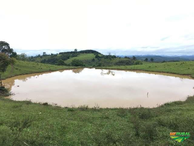 Fazenda em CAMPO LARGO-PR, 245 alqueires, ACEITA PROPOSTA!!