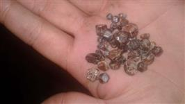 Pedras rubi brutas