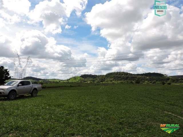 Fazenda localizada entre São Sebastião do Passé e Pojuca.