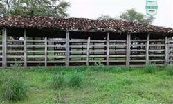 Ótima fazenda no Distrito de Serrolândia