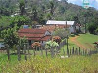 Fazenda Itamaraty com 300 Hectares, potencial para 300 gados, 70 hectares de cacau