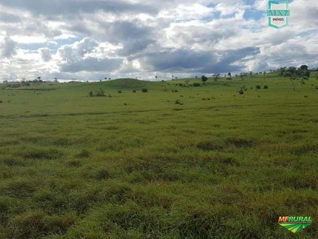 Santa Cruz da Vitória. Fazenda de 1.300 Hectares, sendo 1.60 Ha de pastos