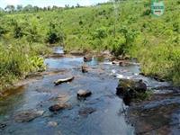 Maraú. Fazenda de 710 Hectares com diversas atividades de produção e rica em água.