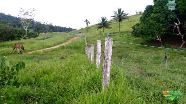 Fazenda de 730 Hectares. Para 700 gados e 1000 @ de cacau.