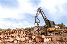 Escavadeira hidráulica -  Harvester Florestal CAT 320DFM