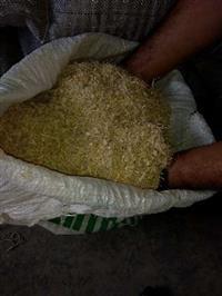 Rolão de milho