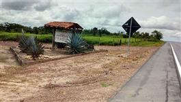 Arrendar fazenda para plantio no Maranhão