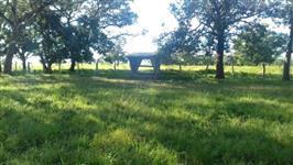 Fazenda em Itacajá - to, 184 alqueires, com 70 formados, em pastagens, casa sede, curral