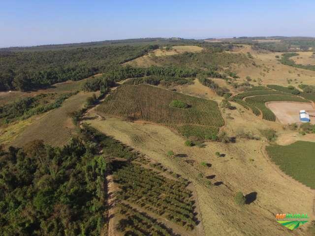 Ibiraci Minas Gerais fonte: imagens.mfrural.com.br