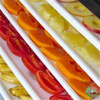 Fábrica de frutas desidratadas/secas