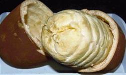 Polpa de cupuaçu tesourada/ orgânico