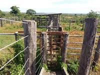 Venda de Fazenda de 314 hectares