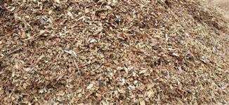 Cavaco Ecológico Biomassa