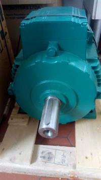 Motor Eletrico 2 polos 3600 rpm 10  hp  siemens