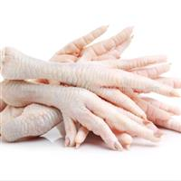 Procuramos produtores e frigoríficos que atendam exportação de patas de frango grade A