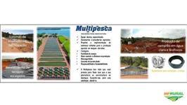 Projetos Aquícolas (Piscicultura, Carcinicultura, Aquaponia) em tanques elevados