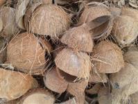 Casca de cocô seco