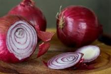 Cebola roxa de excelente qualidade