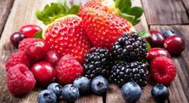 Procuro Fornecedores de Frutas Vermelhas Frescas e Congeladas para Feira de Santana BA