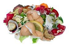 Vendo resíduos orgânicos