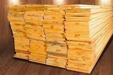 Compro Tabua de Pinus