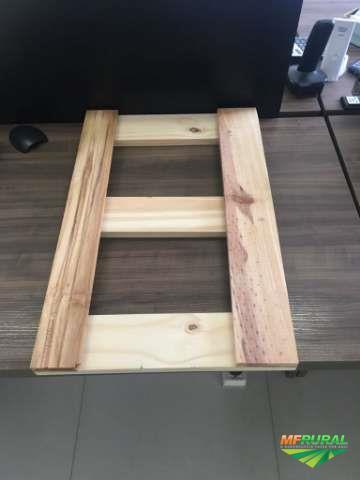 Compramos madeira de Pinus elliottii S4S (serrada, aplainada e secada para exportação)