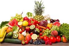 Procuro Distribuidora de Frutas e Legumes