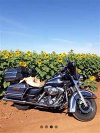 Harley Davidson edição especial de aniversário de 100 anos da HD
