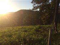 Vendo Terreno Rural 55 Hectares - localizado a 12 km de Itatiaiuçu-MG
