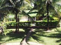 Sitio na beira da BR 153 município de Promissão - Para investidor