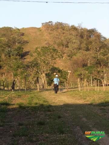 Georreferenciamento e topografia rural