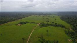 19.490 mil hectares, barbada de 1500 á Hec.