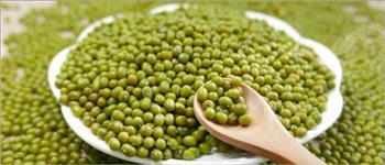Feijões verdes de mung