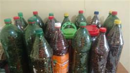 Vende castanha de baru. 70 reais litro descartável  com 2 litro