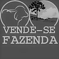FAZENDAS A VENDA EM TODO ESTADO DE MINAS GERAIS!