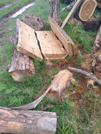 madeira jacaranda