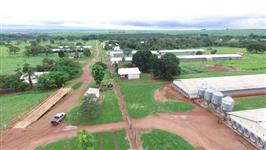 Fazenda 74,30 hectares