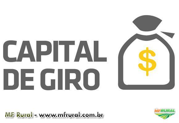Crédito Rural e Capital de Giro via Consórcio
