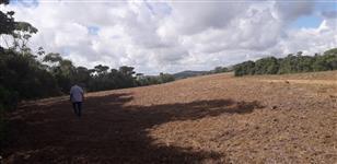 Oportunidade - Fazenda com 2.500 ha Em Pernanbuco