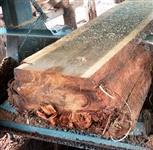 Madeira Teca para Deck e Forro