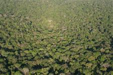 Área para Compensação de Reserva Legal – Amazônia