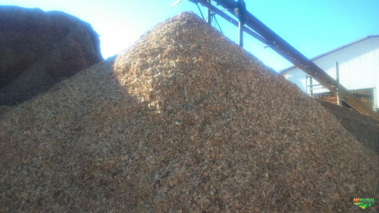 Cavaco de Madeira Reciclada - com certificado