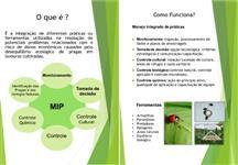 Consultoria em MIP