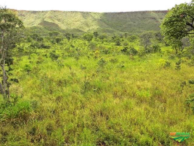 Fazenda 171 Alqueires 11km da BR020 em Posse - Goiás