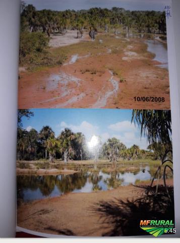 Fazenda Castelo do Sonhos Altamira Pará