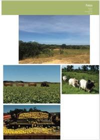 Imóvel Rural no Piauí. 8.841 hectares. Preço abaixo do mercado